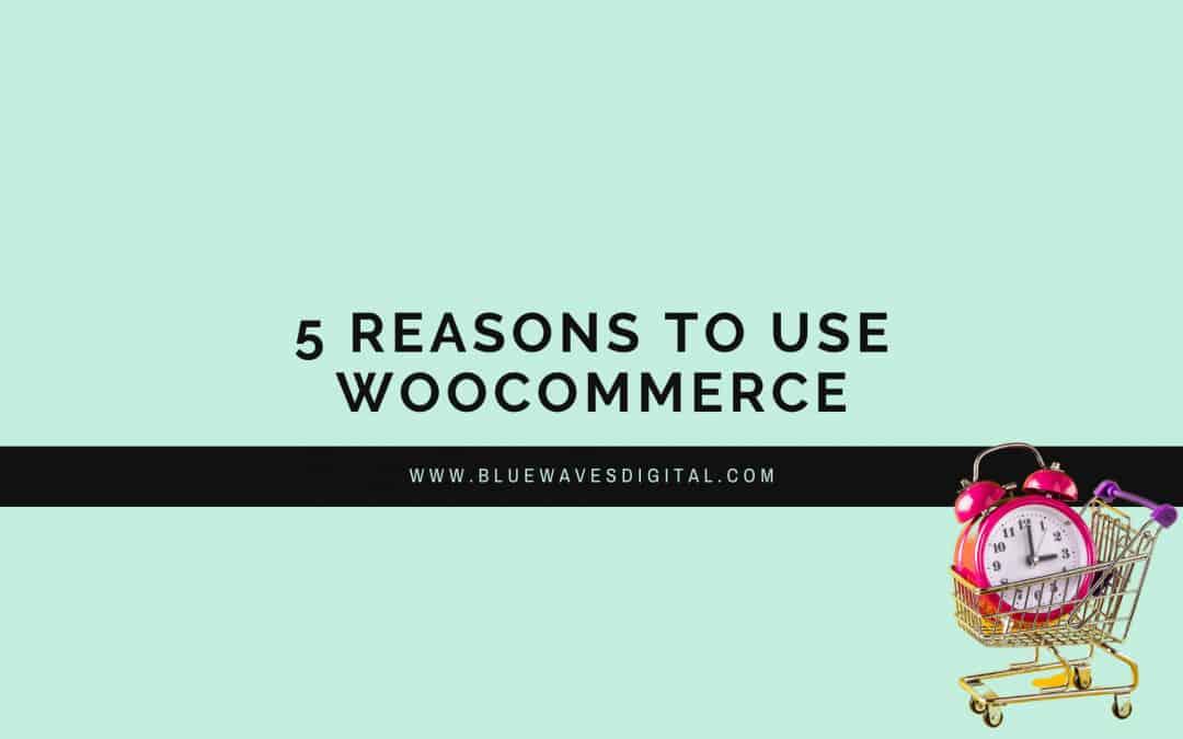 WooCommerce - 5 Reasons You Should Use It